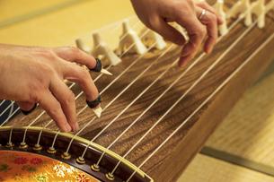 琴の弦を弾くの写真素材 [FYI04784411]