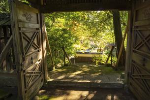 秋の立田自然公園の写真素材 [FYI04784442]