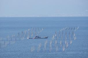 有明海塩屋漁港の海苔養殖場の写真素材 [FYI04784490]