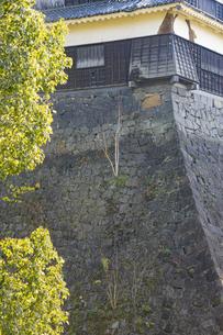 熊本地震で被災した熊本城の写真素材 [FYI04784503]