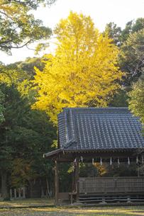 宇留毛菅原神社の写真素材 [FYI04784543]