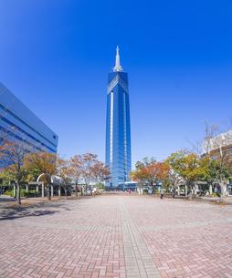 福岡県 風景 福岡タワー 昼景の写真素材 [FYI04784683]