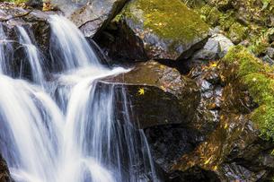 秋の渓流と紅葉の写真素材 [FYI04784730]