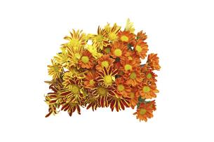 菊の花束の写真素材 [FYI04784732]