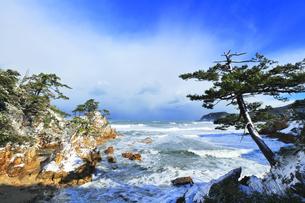 冬の山陰海岸 浦富海岸雪景色の写真素材 [FYI04784985]