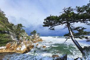 冬の山陰海岸 浦富海岸雪景色の写真素材 [FYI04784987]