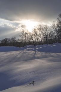 手付かずの冬景色の写真素材 [FYI04785164]