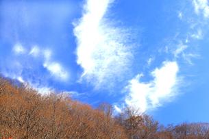 岐阜県 揖斐川町   青空に白い雲が印象的な晩秋の山の写真素材 [FYI04785199]