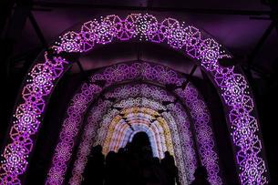 光のトンネル(クリスマスイルミネーション)の写真素材 [FYI04785236]