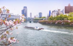 大川を運行するアクアライナーと大阪造幣局の桜の通り抜けの写真素材 [FYI04785250]