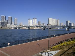 晴海大橋と豊洲ぐるり公園 東京都の写真素材 [FYI04785725]