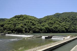 6月 渡月橋上流の石堤 -新緑の嵐山 - の写真素材 [FYI04786031]