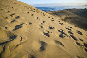 砂丘と青い海の美しい風景の写真素材 [FYI04786039]