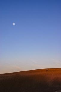 美しい砂丘と月の写真素材 [FYI04786040]