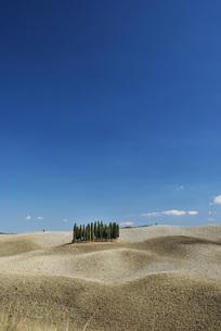 シンプルで美しいトスカーナの風景の写真素材 [FYI04786053]