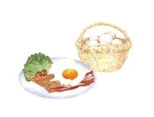 かごに入った卵とベーコンエッグのイラスト素材 [FYI04786617]