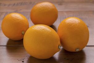 国産マイヤーレモンの写真素材 [FYI04786708]