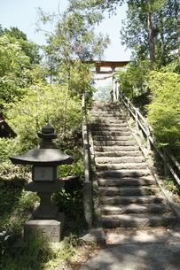 駒形神社の写真素材 [FYI04786789]