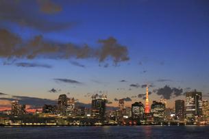 東京都心の夜景パノラマの写真素材 [FYI04786864]