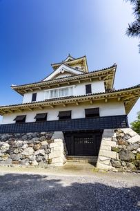 長浜城歴史博物館の写真素材 [FYI04786934]
