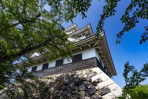 長浜城歴史博物館の写真素材 [FYI04786940]