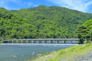 初夏の嵐山の渡月橋と桂川の写真素材 [FYI04787014]