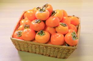 干し柿用の柿 の写真素材 [FYI04787042]