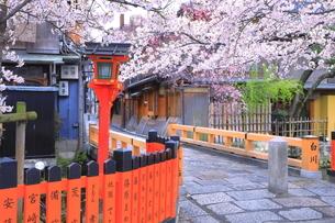 春の祇園の巽橋と白川の写真素材 [FYI04787050]