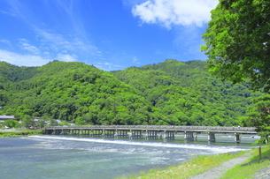 初夏の嵐山の渡月橋と桂川の写真素材 [FYI04787061]
