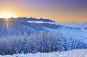 八ヶ岳連峰と富士山と霧氷のカラマツ林と雲海と朝日の写真素材 [FYI04787121]