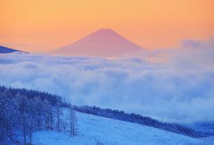 朝の富士山と霧氷と雲海の写真素材 [FYI04787125]