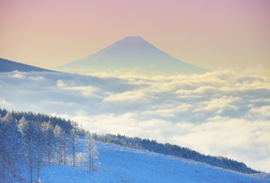 朝の富士山と霧氷と雲海の写真素材 [FYI04787127]