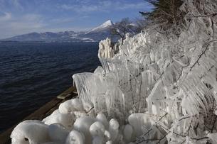 猪苗代湖 しぶき氷の写真素材 [FYI04787629]