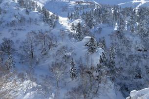 北海道 十勝岳連峰の冬の風景の写真素材 [FYI04787675]