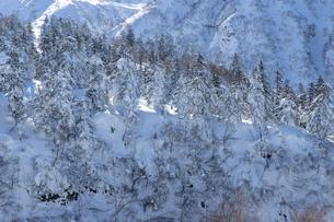 北海道 十勝岳連峰の冬の風景の写真素材 [FYI04787677]