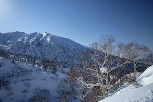 北海道 十勝岳連峰の冬の風景の写真素材 [FYI04787692]