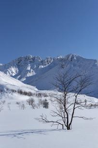 北海道 十勝岳連峰の冬の風景の写真素材 [FYI04787701]