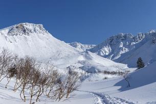 北海道 十勝岳連峰の冬の風景の写真素材 [FYI04787709]