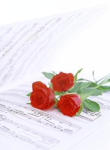 楽譜と赤いバラの写真素材 [FYI04787759]