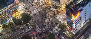 渋谷交差点と通行人の写真素材 [FYI04787872]