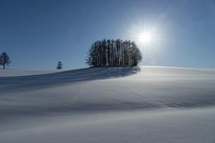 北海道 冬の美瑛町の風景の写真素材 [FYI04788018]