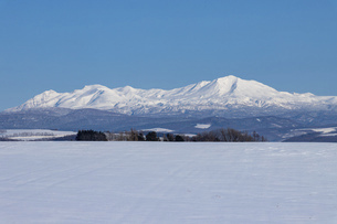 北海道 十勝岳連峰の冬の風景の写真素材 [FYI04788020]