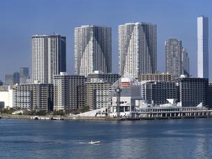 東京都 晴海客船ターミナルと高層マンション街の写真素材 [FYI04788209]