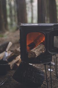 薪ストーブの焚き火。杉の森の中の冬キャンプ。の写真素材 [FYI04788602]