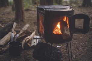 薪ストーブの焚き火。杉の森の中の冬キャンプ。の写真素材 [FYI04788633]