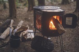 薪ストーブの焚き火。杉の森の中の冬キャンプ。の写真素材 [FYI04788663]