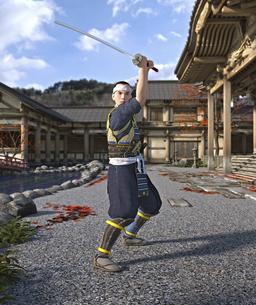japan  samurai   武士 歴史 武士道 刀 日本 CG  居合 抜刀のイラスト素材 [FYI04788665]