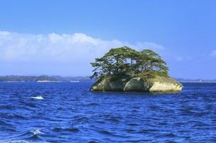 日本三景 松島の写真素材 [FYI04788745]