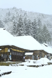 降雪の大内宿の写真素材 [FYI04788772]