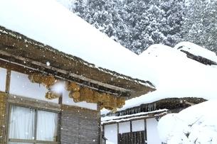 降雪の大内宿の写真素材 [FYI04788780]